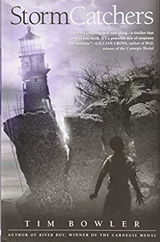 book cover of Storm Catchers