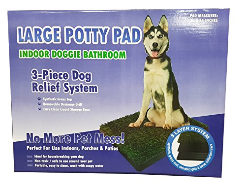 Large Pet Potty Patch Dog Training Bathroom Pad Indoor Or Outdoor Use 25 X 20 X 2 Price