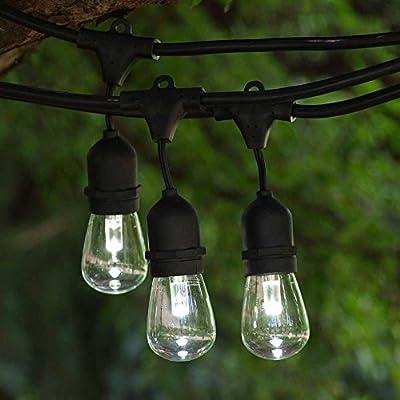 LED Outdoor String Light 100 ft Black Suspended LED S14 Prof CW Bulb