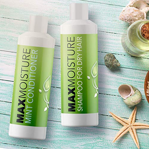 Moisturizing Shampoo and Conditioner Set For Dry Hair + Itchy Scalp - Hair Growth + Hair Repair Treatment - Prevents Hair Loss - Anti Frizz Natural Hair Care - Smooth Hair with Aloe Argan + Jojoba Oil