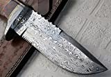 REG 16 C-FR Handmade Damascus Steel 11.00 Inches Bowie Knife - Exotic Wood Handle