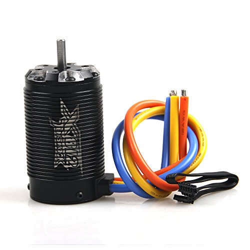 Tenshock 6 Pole 1:8 Sensor RC Brushless Motor ® X812 1900KV For 1/8 For 1/8 RC Cars Traxxas Ofna Black Dia.5mm,get funshobby decal
