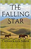 The Falling Star: Novella One (TFS Book 1)