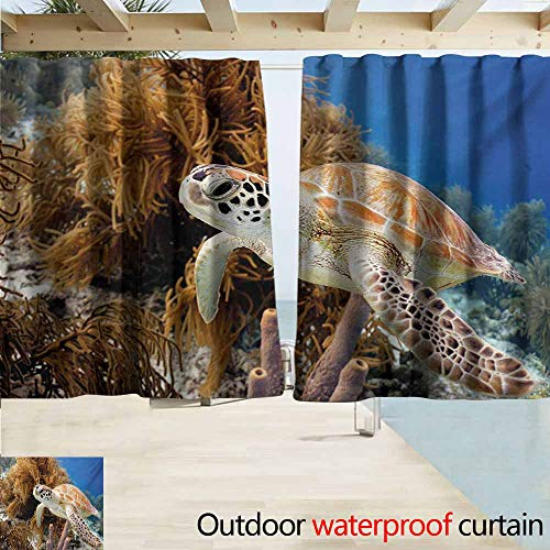Darkening Curtains,Turtle Coral Reef and Sea Turtle Close Up Photo Bonaire Island Waters Maritime,Simple Stylish Waterproof,W63x45L Inches,Pale Coffee Brown -