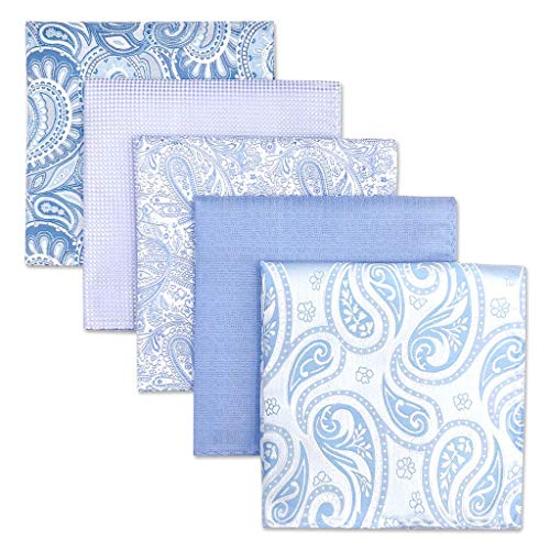 Shlax&Wing 5 Pieces Assorted Mens Pocket Square Handkerchiefs Set