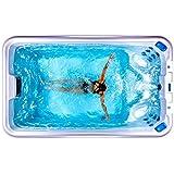 Fisher Spas Play. Swim spa, acrylic, portable, plug-in spa pool