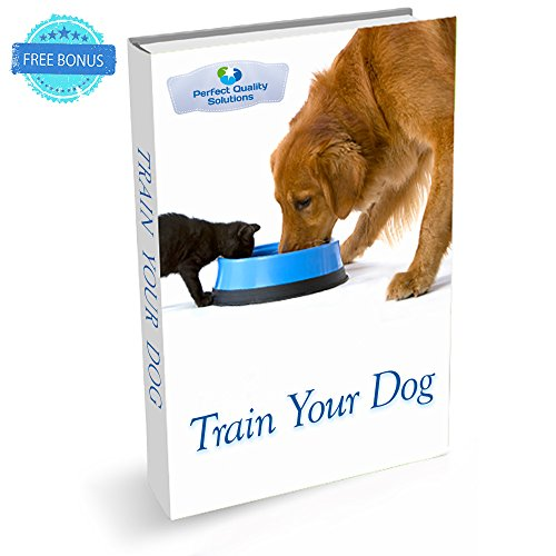 Small Dog Agility Equipment For Sale