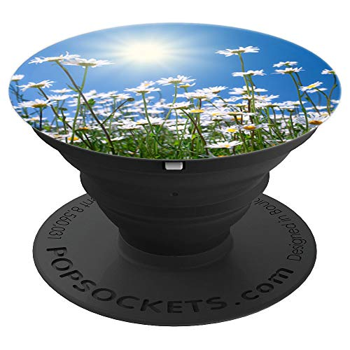 - So Pretty Field Of Daisies And Grass White Daisy In Sunshine - PopSockets Grip and Stand for Phones and Tablets