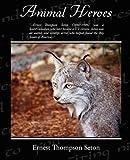 Animal Heroes, Ernest Thompson Seton, 1438508913