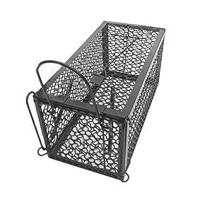warkhome pi ge souris pi ge facile d 39 utilisation. Black Bedroom Furniture Sets. Home Design Ideas