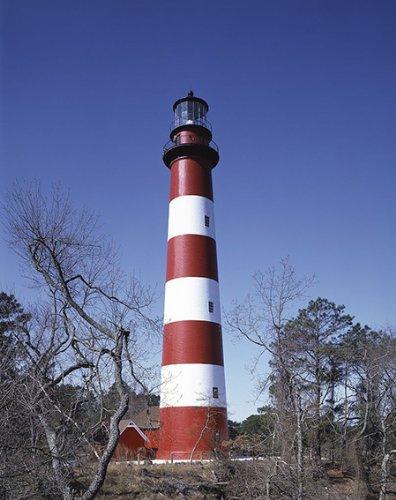 Photo of Lighthouse on Assateague Island, Virginia -