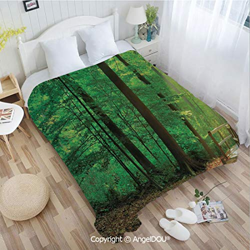 AngelDOU Portable Car Air Conditioner Blanket W59 xL78 A Natural Trail and Wooden Walkway lit by Sun Beams Leading into The Woods in Forest for Home Couch Outdoor Travel.