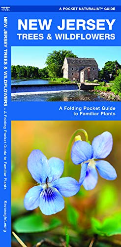 New Jersey Trees & Wildflowers: A Folding Pocket Guide to Familiar Plants (Wildlife and Nature Identification)