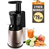 Argue Le Slow Juicer Easy Clean 150W Cold Press Masticating Juicer (Small Image)