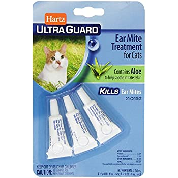 How To Apply Ear Mite Medicine To Cats