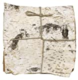 Natural White Birch Bark. Bundle of 6 (11.75'' square birch bark)