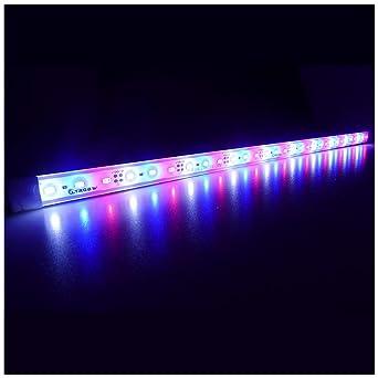 Strip En Grow Coral 5730 Super Light Led Ltrgbw Cabinet Étanche Lumières Dc Bright Smd Aluminium Lampe 12w Lighting Usine 12v 30led Aquarium Kc1JlF