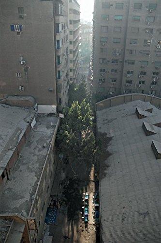 Download Cairo Breakfast alley, night coffee, Cinéma Odeon pdf epub