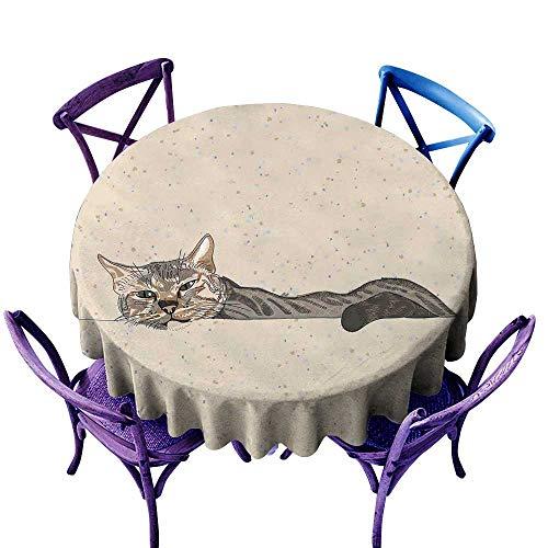Cat Waterproof Tablecloth Lazy Sleepy Cat Figure in Earth Tones Cute Furry Mascot Indoor Pet Art Illustration Great for Buffet Table D67 Grey Beige -