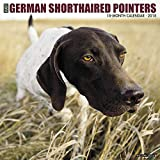 Just German Shorthaired Pointers 2018 Wall Calendar (Dog Breed Calendar)