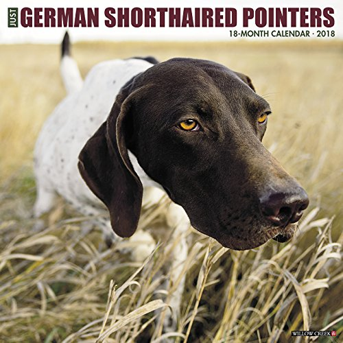 Just German Shorthaired Pointers 2018 Calendar