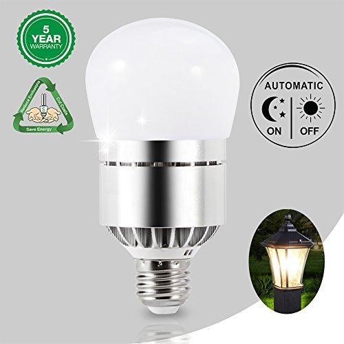 Outdoor Lantern Light Bulbs - 7