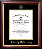 Liberty University Affordable Diploma Frame (14 X 17) Vertical