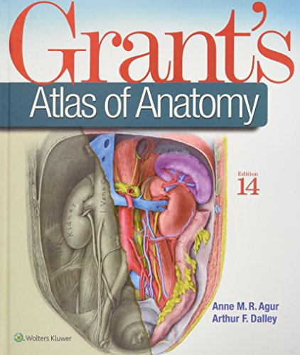 Download grant s atlas of anatomy by anne m r agur bsc ot msc download grant s atlas of anatomy by anne m r agur bsc ot msc phd pdf read epub online malvernweather Image collections