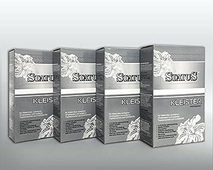 4x 250 g STATUS PROFI Pegamento en polvo para tejido no tejido | engrudo de 1