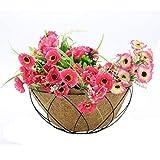 "14"" Gardener Select Wall Basket Shape Coco Liner"