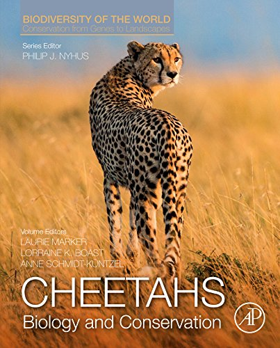 Cheetah Collection (Cheetahs: Biology and Conservation: Biodiversity of the World: Conservation from Genes to Landscapes)