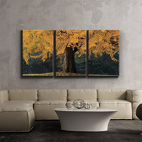 Print Contemporary Art Wall Decor Beautiful Yellow Autumn Tree Artwork Wood Stretcher Bars x3 Panels