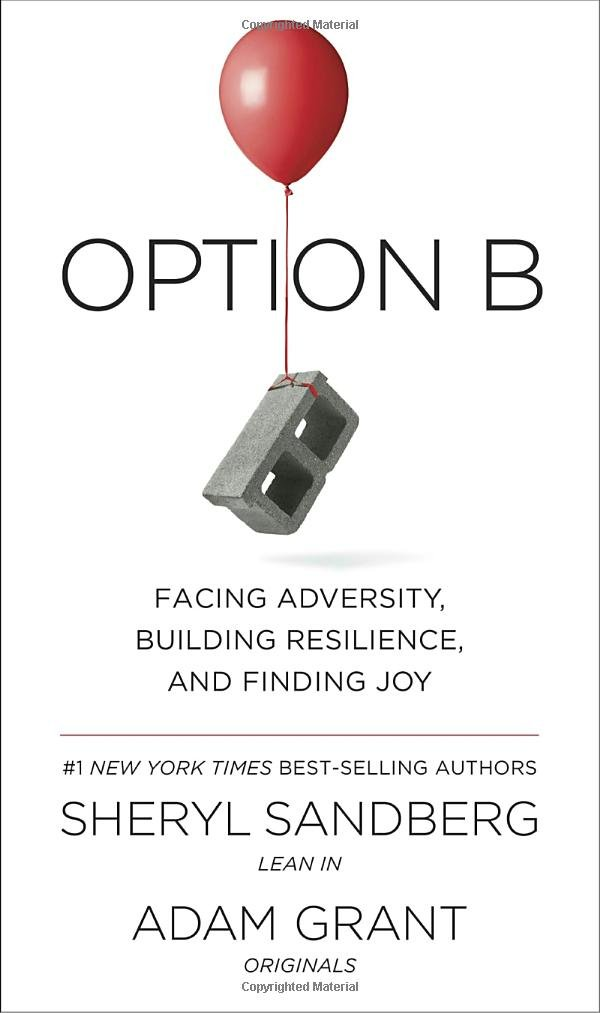 Option Adversity Building Resilience Finding product image