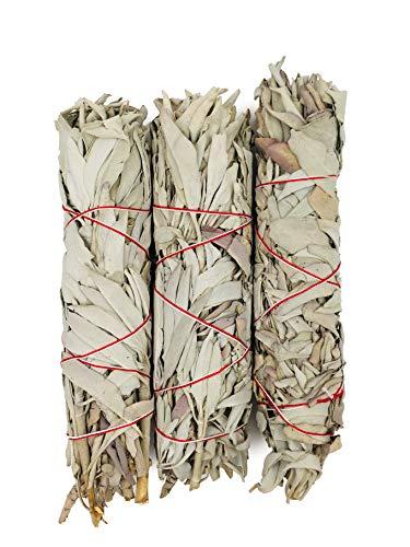 Alternative Imagination Premium, 7 Inch California White Sage Smudge Sticks.