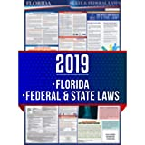 2019 Florida State and Federal Labor Laws Poster - OSHA Workplace Compliant 24'' x 36'' - All in One Required Posting - UV Coated