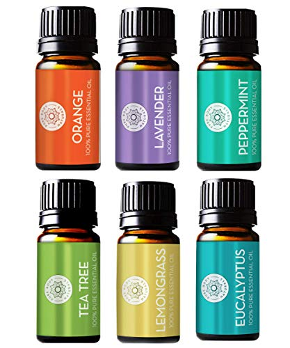 Pure Body Natural Essential Oils Set 100% Pure Aromatherapy Diffuser Oils Sample Kit for Beginners Lavender Tea Tree Eucalyptus Lemongrass Orange Peppermint  10 Milliliter 6 Count