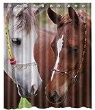 3d Horse Shower Curtain -66' x 72'