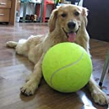 9.5inch Giant Tennis Ball For Pet Chew Toy Big Inflatable Tennis Ball Signature Mega Jumbo Pet Toy Ball Supplies Outdoor Cricket