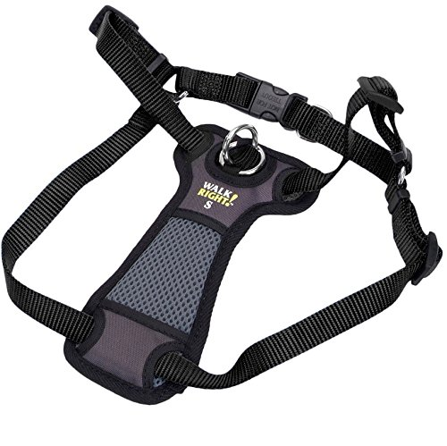 Walk Right Padded Front Harness Small Color: Black by Coastal Pet