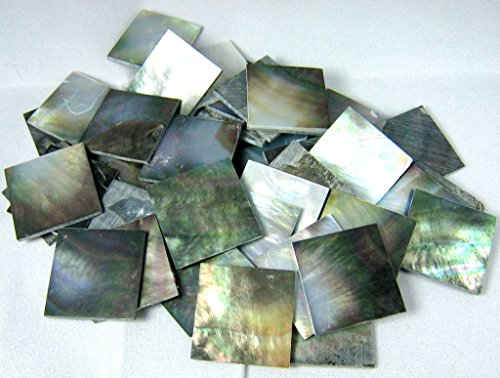 150 Pieces 2cm(0.78'') Square Sea Black Abalone Shell. One Side Polished. For Mosaic Art Tiles, Musical Instrument Inlay. by Unknown