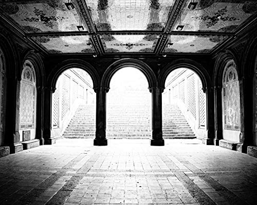 (Bethesda Terrace Black and White Photograph New York City Central Park 8x10 inch print )