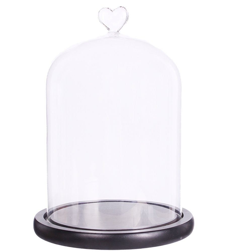 "Moonlear Clear Glass Dome Display Case Heart Handle Cloche With wood Base Dia 6"" H 8.5"" (black wood base)"