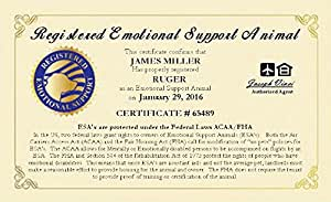 official emotional support animal esa certificate customized with you and your. Black Bedroom Furniture Sets. Home Design Ideas