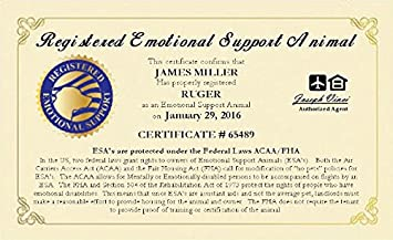 Amazon official emotional support animal esa certificate official emotional support animal esa certificate customized with you and your pets information and certificate yadclub Choice Image