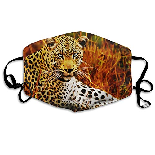 (Mr.Roadman Unisex Mouth Mask Cool Leopard Brave Picture Polyester Anti-dust Masks Washed Reusable Face Mask for Outdoor Cycling)