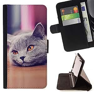 BullDog Case - FOR/Samsung Galaxy S4 IV I9500 / - / Cute Beautiful British Cat Shorthair /- Monedero de cuero de la PU Llevar cubierta de la caja con el ID Credit Card Slots Flip funda de cuer