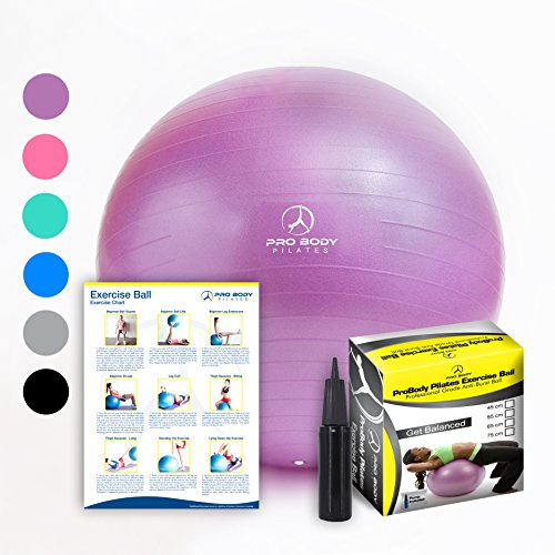 Exercise Ball - Professional Grade Anti-Burst Fitness, Balance Ball for Pilates, Yoga, Birthing, Stability Gym Workout Training and Physical Therapy (Purple, 65 cm)