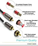 FosPower (3 Feet) 2 RCA M/M Stereo Audio Cable [24K