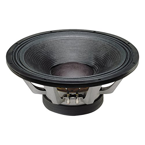 (Electro Voice EVX-180B 1000-watt Pro Woofer)