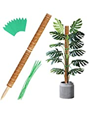 Augshy 34 Inches Moss Poles - 2 Pcs 17 Inches Plant Stakes Moss Sticks for Monstera Indoor Creepers Plant Support Extension Climbing Plants